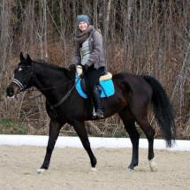 Dressurtraining-2015-02