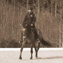 Dressurtraining-2015-18
