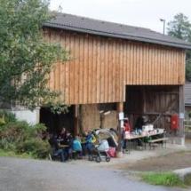 Pferdesegnung-2013-3