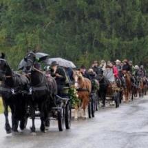 Pferdesegnung-2013-4