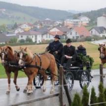 Pferdesegnung-2013-5