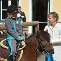 Pferdesegnung-2015-006
