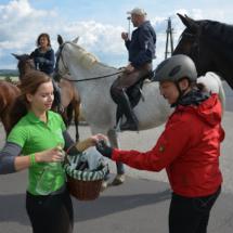 Pferdesegnung-2015-013