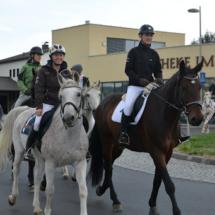 Pferdesegnung-2015-021