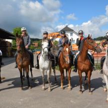 Pferdesegnung-2015-027