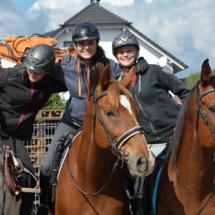 Pferdesegnung-2015-029