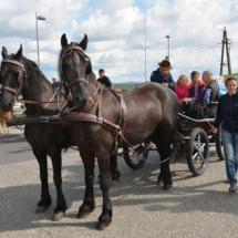 Pferdesegnung-2015-035