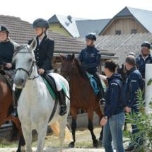 Pferdesegnung-2015-059