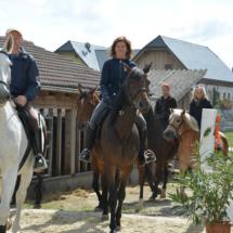 Pferdesegnung-2015-062