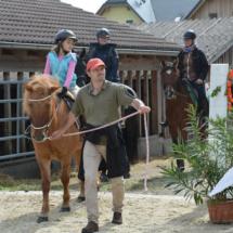Pferdesegnung-2015-065