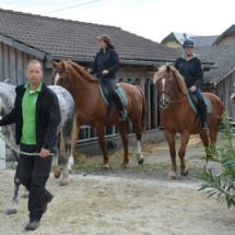 Pferdesegnung-2015-070