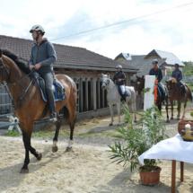 Pferdesegnung-2015-075