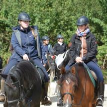 Pferdesegnung-2015-083