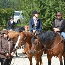 Pferdesegnung-2015-084