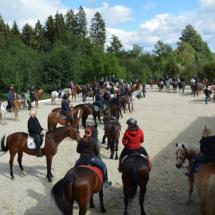 Pferdesegnung-2015-086