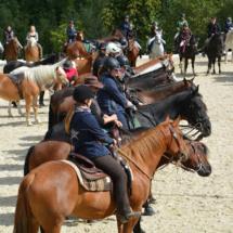 Pferdesegnung-2015-087