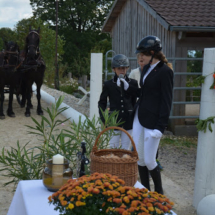 Pferdesegnung-2015-103