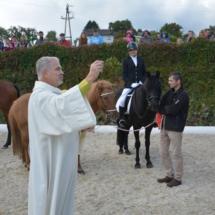 Pferdesegnung-2015-107