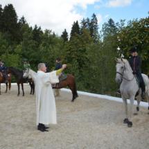 Pferdesegnung-2015-111