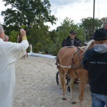 Pferdesegnung-2015-113