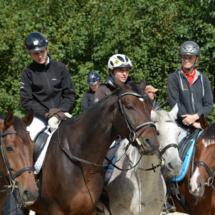 Pferdesegnung-2015-119