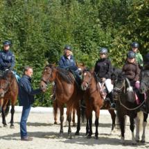 Pferdesegnung-2015-121