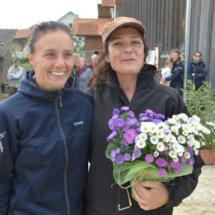 Pferdesegnung-2015-131