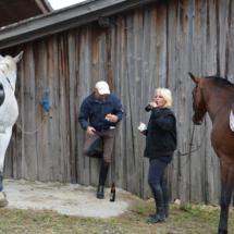 Pferdesegnung-2015-148