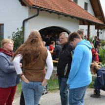 Pferdesegnung-2015-150