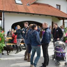 Pferdesegnung-2015-152