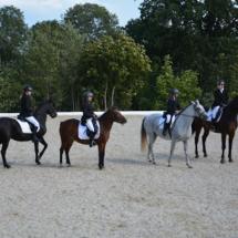 Pferdesegnung-2015-194