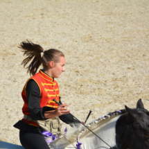 Pferdesegnung-2015-204