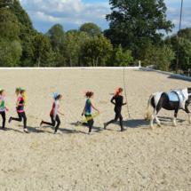 Pferdesegnung-2015-208