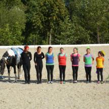 Pferdesegnung-2015-211