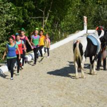 Pferdesegnung-2015-223