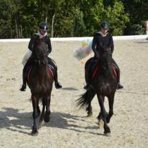 Pferdesegnung-2015-243