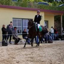 ReiterpassNadel-2014-06